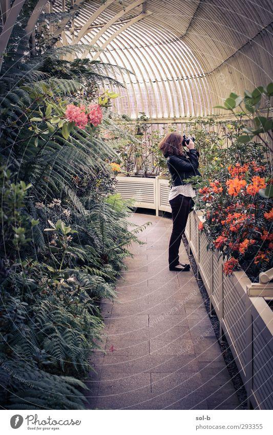 Mensch Natur Jugendliche grün Pflanze Blume Junge Frau Erwachsene feminin 18-30 Jahre Garten Freizeit & Hobby Fotografie Tourismus ästhetisch beobachten