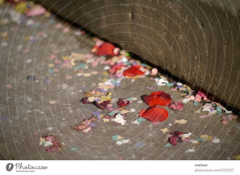 Der Tag danach Feste & Feiern Karneval Hochzeit liegen werfen braun rot Party Veranstaltung Treppe Konfetti vergilbt Verschmutzung dreckig Bodenbelag