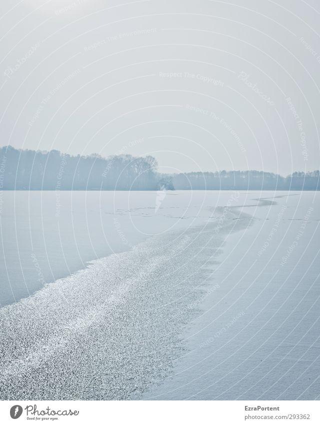 all winter long Himmel Natur blau Wasser weiß Landschaft Winter Wald kalt Umwelt Wege & Pfade Schnee grau See Linie hell