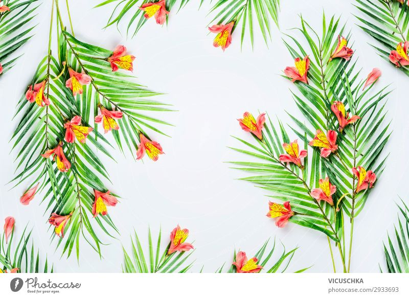 Grüne tropische Palmblätter und exotische Blüten auf weißem Hintergrund, Draufsicht. Rahmen. Flach gelegt. Kopierraum für Ihren Entwurf grün Handfläche Blätter