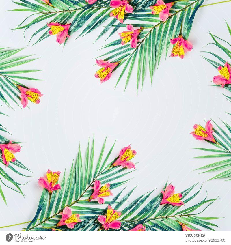 Weißer Hintergrund mit tropischen Palmblättern und Blumen Stil Design Sommer Natur Pflanze Blatt Mode Dekoration & Verzierung Ornament trendy Hintergrundbild