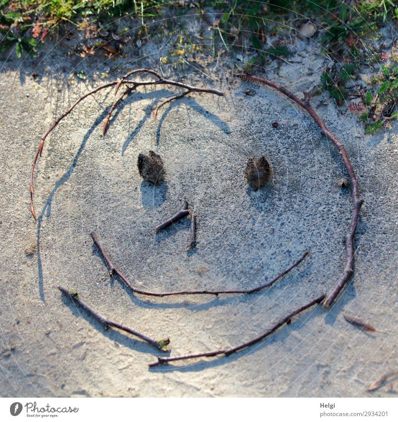 lächelndes Gesicht, gelegt aus Zweigen und Bucheckern auf einer Steinplatte Pflanze Gras Dekoration & Verzierung Smiley Zweige u. Äste Sand Zeichen Linie