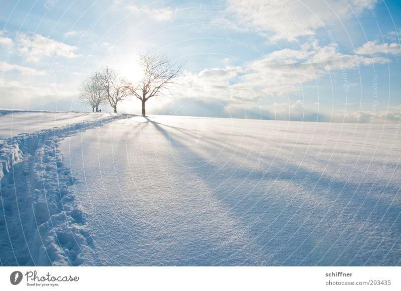 Mit Eau de Javel gewaschen Himmel Natur blau Baum Sonne Landschaft Wolken Winter ruhig Umwelt Berge u. Gebirge Schnee hell Eis Schönes Wetter Frost