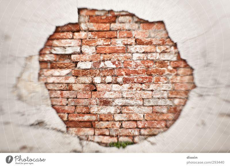 all in all Mauer Wand Fassade alt Stadt Verfall Backsteinwand Backsteinhaus Putzfassade Loch Farbfoto Außenaufnahme Menschenleer Tag Unschärfe