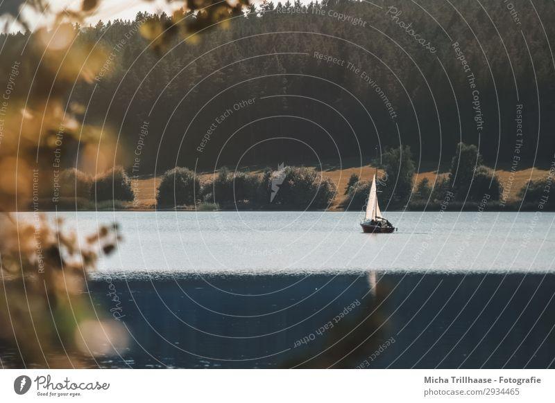 Kleines Segelboot auf dem See Ferien & Urlaub & Reisen Natur blau grün Wasser Landschaft Baum Erholung Blatt ruhig Wald Umwelt natürlich orange