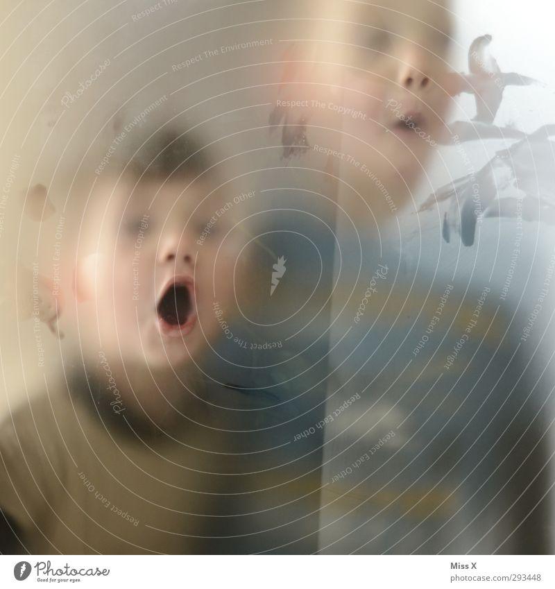 Scheibenputzer Spielen Mensch Kind Kleinkind Gesicht Mund 2 1-3 Jahre 3-8 Jahre Kindheit Fenster lustig Freude Unsinn Grimasse Glasscheibe Milchglas