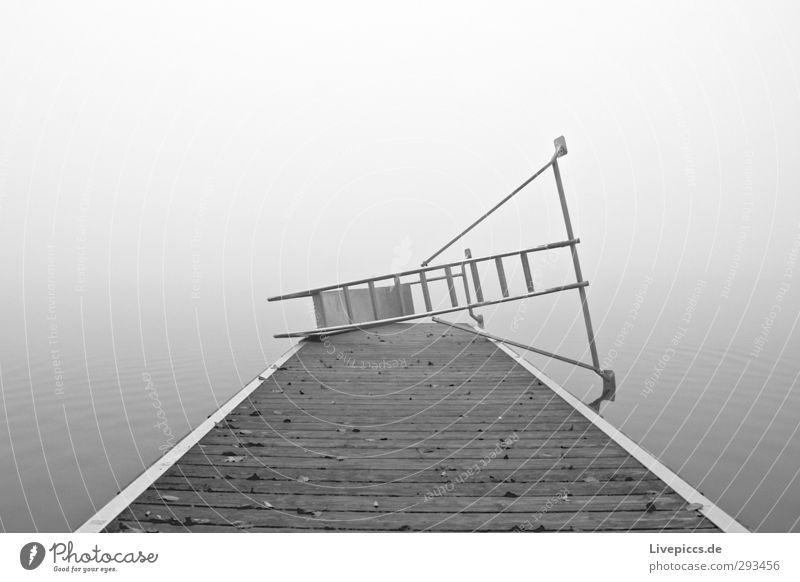 Winterschlaf Himmel Wasser weiß Einsamkeit Landschaft Wolken ruhig Strand schwarz Herbst grau See Schwimmen & Baden liegen Nebel Seeufer