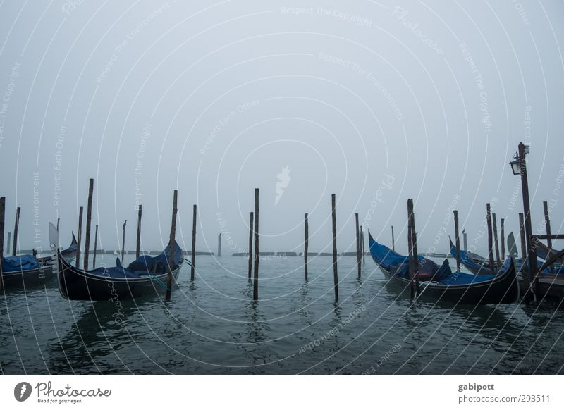 Gondeln im Nebel blau Wasser Traurigkeit Nebel trist Trauer Verkehrswege Schifffahrt Pfosten Venedig schlechtes Wetter Verkehrsmittel Hafenstadt Holzpfahl Gondel (Boot) Passagierschiff
