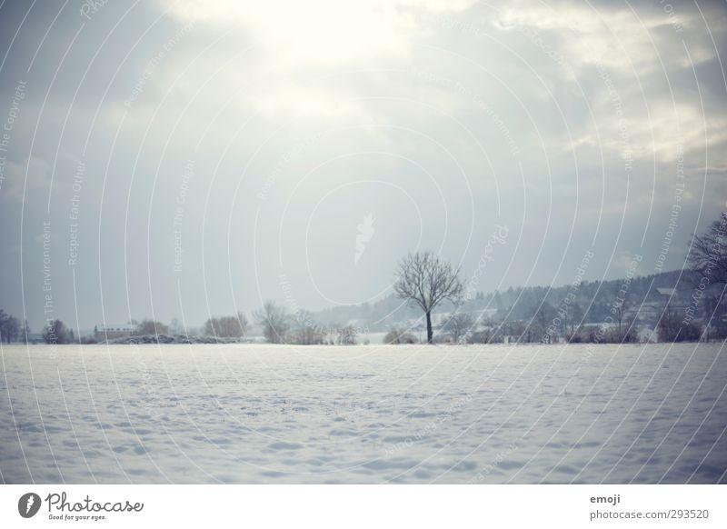 www Natur blau Landschaft Winter Umwelt kalt Schnee natürlich Feld