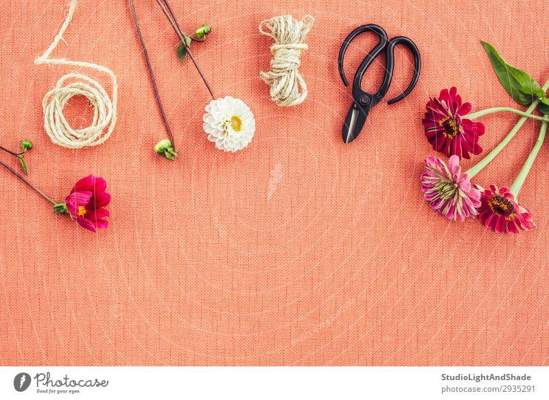Floristischer Arbeitsbereich auf pfirsichfarbenem Leinwandhintergrund elegant Design schön Dekoration & Verzierung Arbeit & Erwerbstätigkeit Gartenarbeit