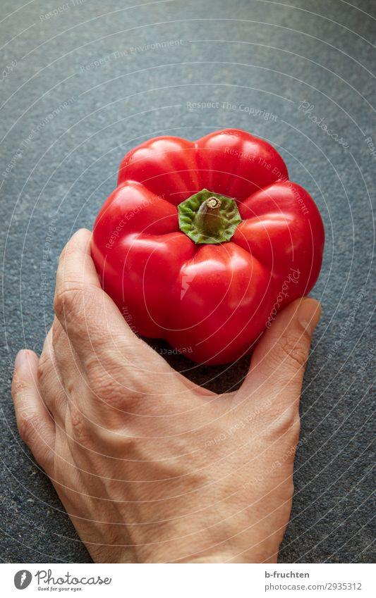 Hier ist ein roter Paprika Lebensmittel Gemüse Ernährung Bioprodukte Vegetarische Ernährung Gesunde Ernährung Koch Küche Hand Finger Arbeit & Erwerbstätigkeit