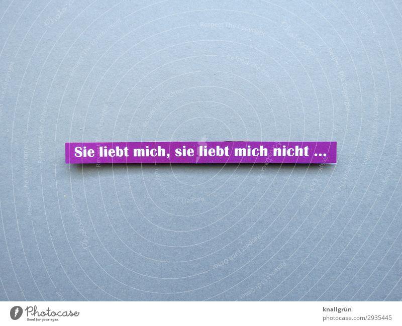 Sie liebt mich, sie liebt mich nicht ... Schriftzeichen Schilder & Markierungen Kommunizieren Liebe grau violett weiß Gefühle Glück Frühlingsgefühle Sympathie