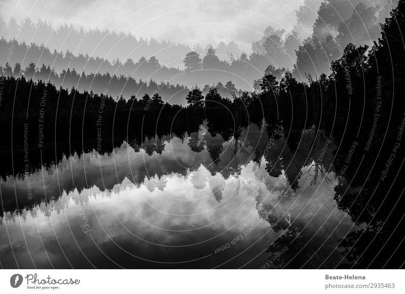 Eiszeit | Blindensee im Winter Lifestyle Umwelt Natur Himmel Schönes Wetter Frost Baum Wald Schönwald Schwarzwald beobachten entdecken Erholung genießen