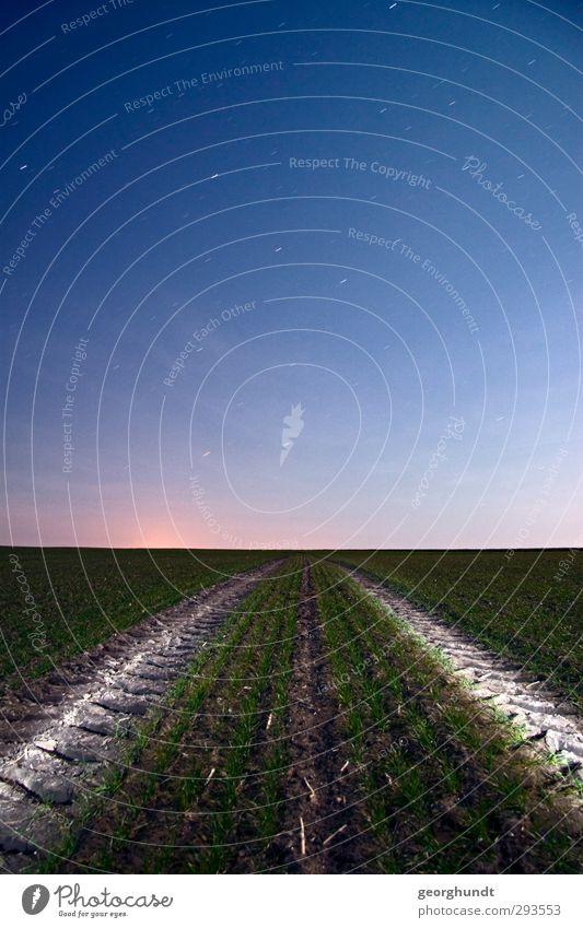 Lichtverackerung elegant Natur Landschaft Erde Luft Stern Herbst Winter Pflanze Feld Hügel Ostsee Kirchdorf Insel Poel Straße Wege & Pfade Stahl blau grün