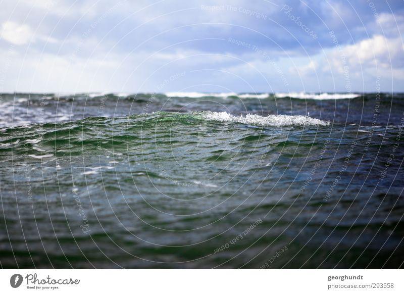 Wellenwelle Natur blau Ferien & Urlaub & Reisen Wasser Meer Landschaft Wolken Strand Erholung Umwelt Sport Küste Schwimmen & Baden Wind Insel