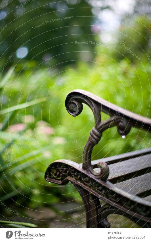Platz der Ruhe Ferien & Urlaub & Reisen grün ruhig Erholung Garten Gesundheit braun Regen sitzen Zufriedenheit elegant warten Design nass Idylle Wassertropfen