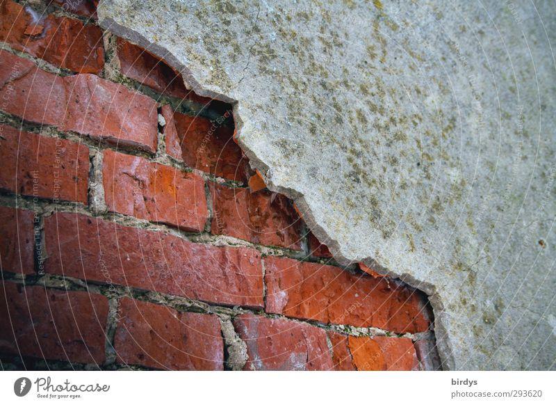 Einblick Baustelle Mauer Wand Fassade Backstein alt authentisch Originalität Senior Stadt Verfall Wandel & Veränderung Zerstörung Am Rand Putz baufällig Schaden