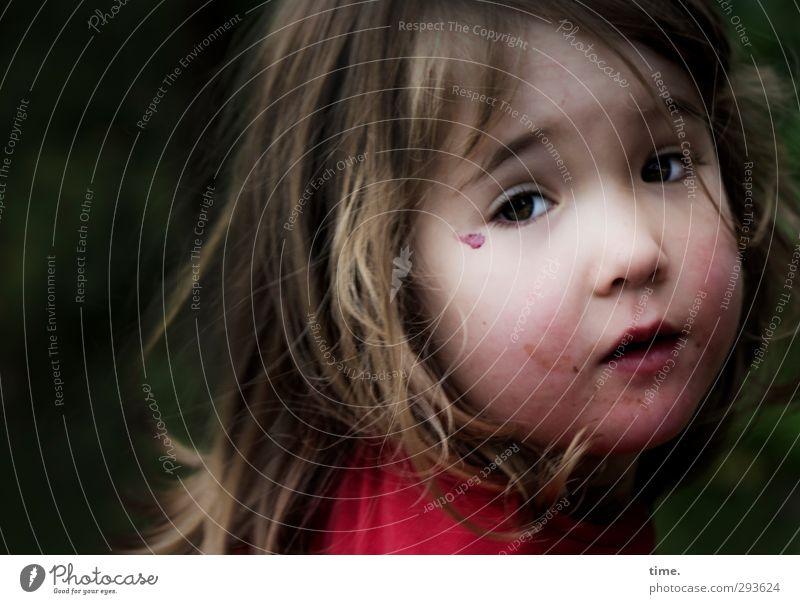 Kleines Wunder Mensch Gesicht Wärme Leben feminin Kopf Stimmung Kindheit Zufriedenheit authentisch Warmherzigkeit Wandel & Veränderung einzigartig Wunsch