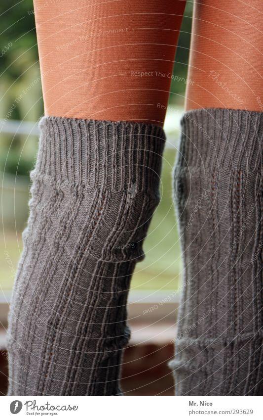 socks Kind Jugendliche feminin grau Beine Mode braun Kindheit Haut Bekleidung Streifen Stoff dünn 8-13 Jahre Material Strümpfe