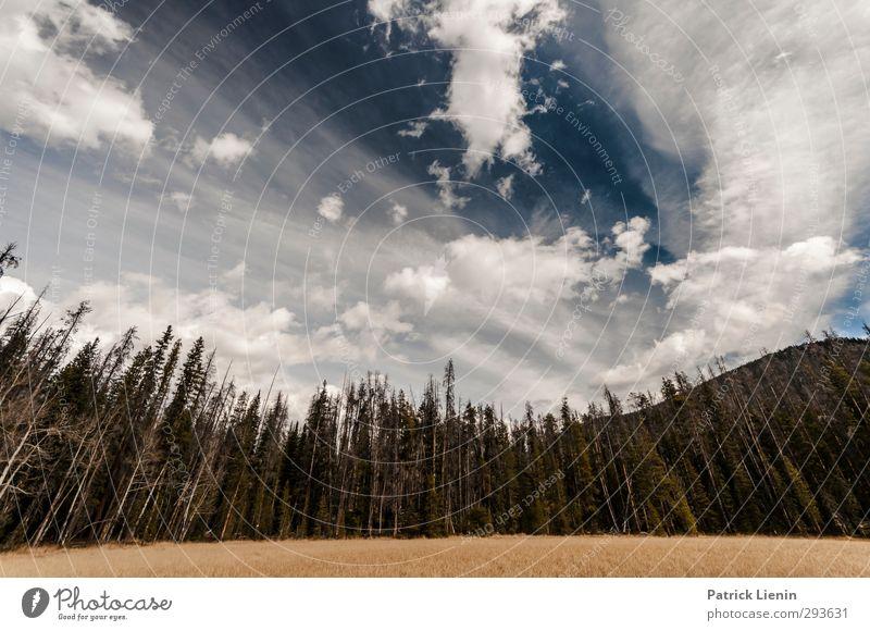 Rocky Mountain Sky Natur Landschaft Umwelt Stimmung Zufriedenheit Schönes Wetter Urelemente Hügel