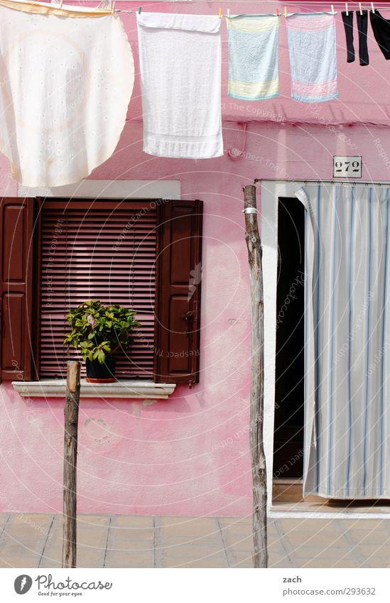 für Mädchen Pflanze Topfpflanze Venedig Burano Italien Dorf Fischerdorf Altstadt Haus Mauer Wand Fassade Fenster Tür Fensterladen Strümpfe Stoff Wäsche Handtuch
