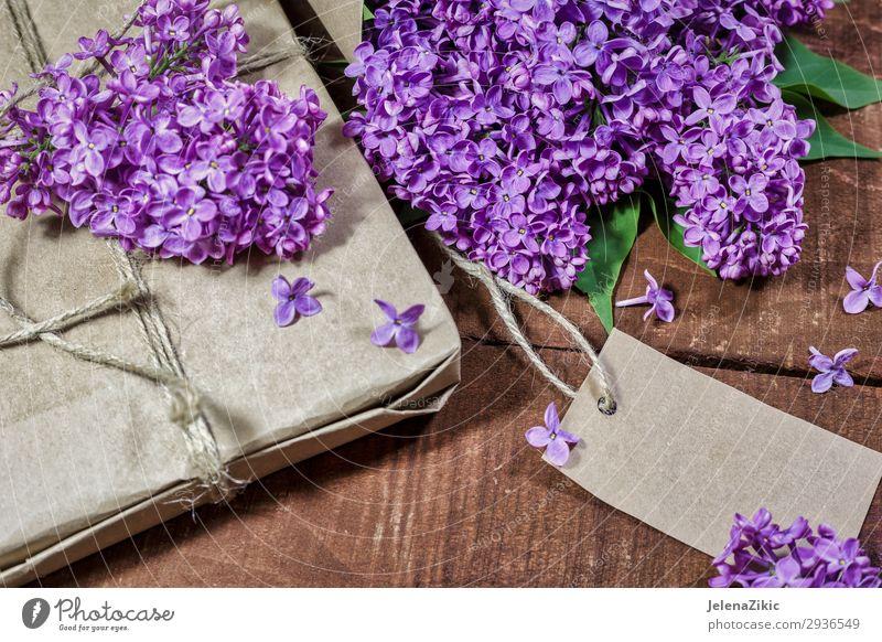 Geschenk und Strauß von Flieder auf einem Holztisch schön Sommer Dekoration & Verzierung Schreibtisch Tisch Feste & Feiern Valentinstag Muttertag Ostern