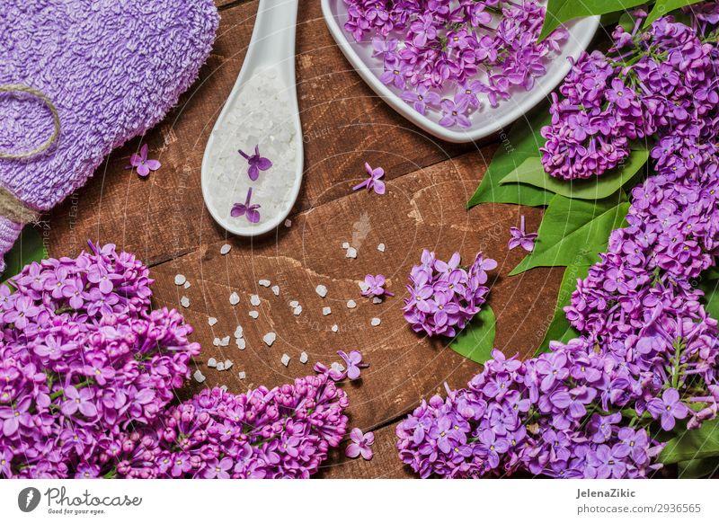 Aromatherapie, Wellness und Spa mit lila Blüten Schalen & Schüsseln Lifestyle schön Körper Haut Kosmetik Behandlung Erholung Tisch Natur Blume Holz natürlich