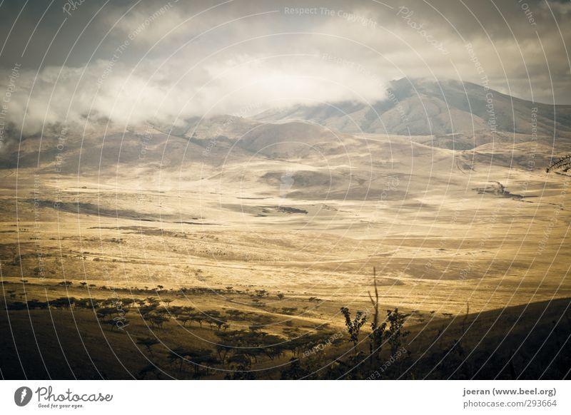 Ngorongoro Krater in Tansania (Afrika) Umwelt Natur Landschaft Urelemente Sand Himmel Wolken Gewitterwolken Klima Wetter Schönes Wetter schlechtes Wetter Wüste