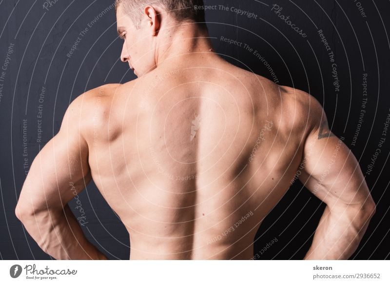 starker Bodybuilder Rücken Lifestyle schön Körper Haut Sauna Entertainment Party Sport Fitness Sport-Training Sportler Erfolg Kindererziehung Bildung