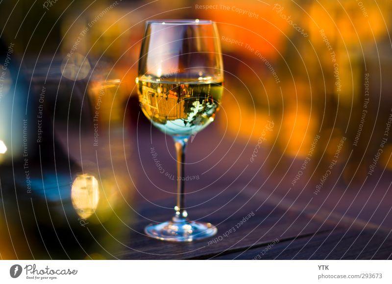 World in Wine Sonne Stil Gesundheit Lifestyle Lebensmittel Stimmung glänzend elegant gold Ernährung genießen Getränk trinken Gastronomie Wein Veranstaltung