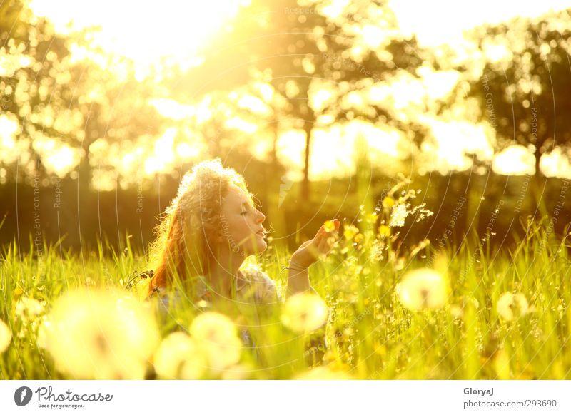 Geheimnis Mensch Jugendliche grün Sommer Blume ruhig Erholung Junge Frau Gesicht Erwachsene gelb Leben feminin Haare & Frisuren Glück 18-30 Jahre