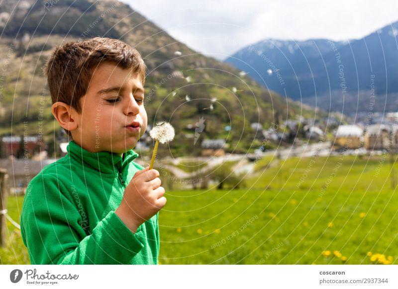 Kleiner Junge, der ein Dantelion auf der grünen Wiese bläst. Lifestyle Freude schön Gesicht Erholung Freizeit & Hobby Spielen Freiheit Sommer Berge u. Gebirge