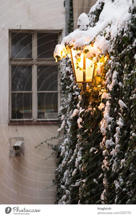 Prag II Pflanze Winter Fenster kalt gelb Wärme Wand Schnee grau Lampe leuchten Europa Straßenbeleuchtung Altstadt Prag Lampenlicht