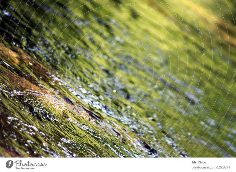 moosalb Umwelt Natur Wasser See Bach Fluss ruhig Wasseroberfläche Reflexion & Spiegelung Wildbach Wasserwirbel Rauschen Erfrischung Quelle Sauberkeit Gesundheit