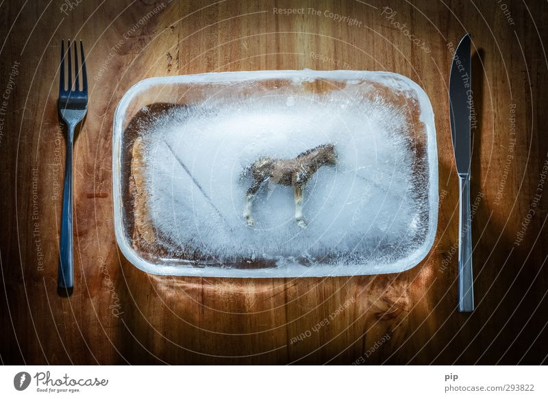 tiefkühllasagne Lebensmittel Fleisch fertiggericht Tiefkühlkost Ernährung Teller Messer Gabel Pferd Holz betrügen Ekel pferdefleisch Fleischskandal tiefgekühlt