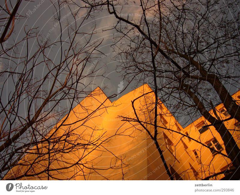 Altbau Umwelt Himmel Sonnenaufgang Sonnenuntergang Herbst Klima Klimawandel Wetter Schönes Wetter Baum Stadt Hauptstadt Stadtzentrum Haus Bauwerk Gebäude