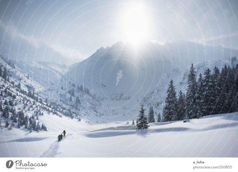 to be alone with you Lifestyle Sport Wintersport Skifahren Umwelt Natur Landschaft Urelemente Himmel Sonne Sonnenlicht Schönes Wetter Schnee Wald Alpen