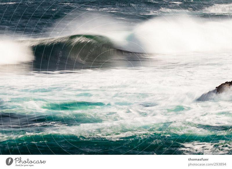 Dynamik Natur Ferien & Urlaub & Reisen Wasser Meer Strand Ferne Bewegung Freiheit Küste Wellen Wind Kraft wild groß Insel Energie