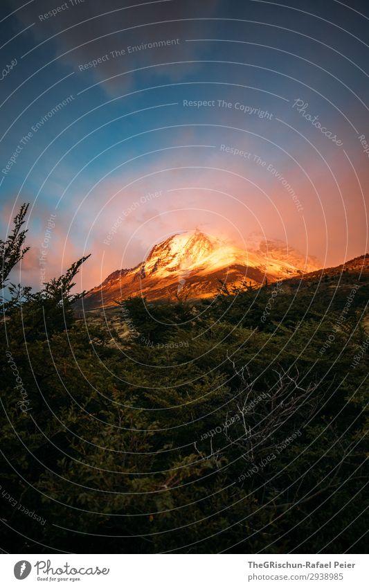 Patagonien Natur Landschaft ästhetisch blau gold orange Chile Berge u. Gebirge rau Wind kalt Wolken Stimmung Außenaufnahme Sonnenaufgang niedlich glühen