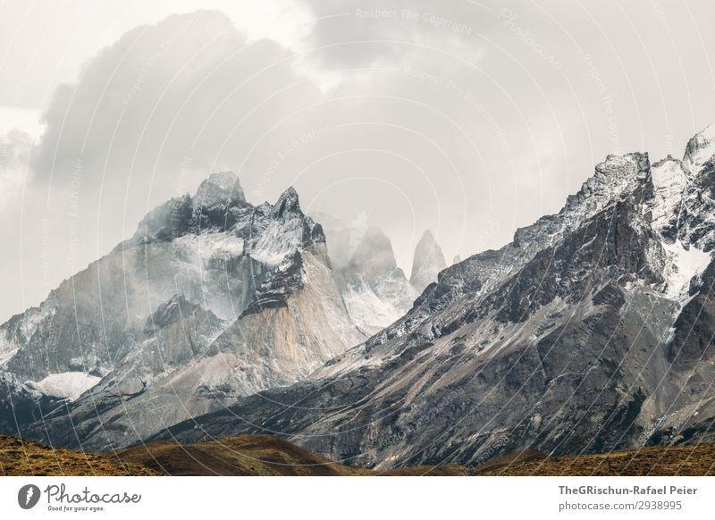 Torres del Paine - NP Umwelt Natur Landschaft braun grau weiß Wolken Patagonien Chile Außenaufnahme Wind kalt Torres del  Paine Torres del Paine NP Gipfel