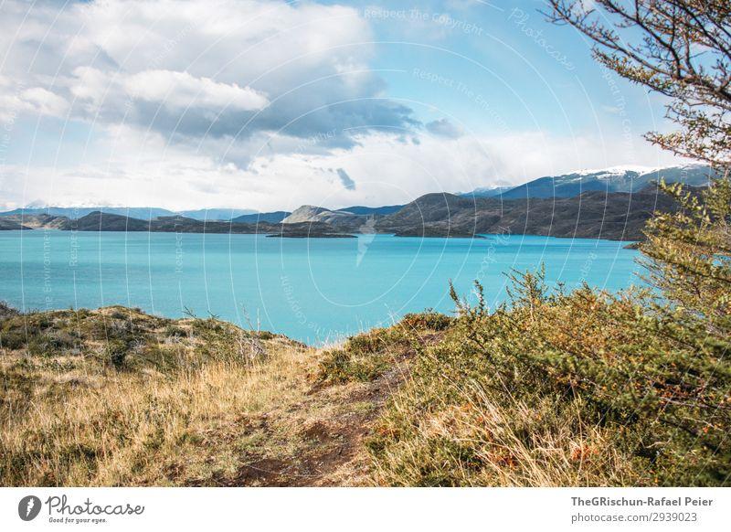 Türkis See im Torres del Paine Nationalpark Umwelt Natur Landschaft blau braun gold türkis mehrfarbig Torres del Paine NP Berge u. Gebirge Wind Wolken Wetter