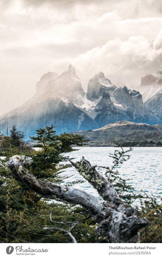 Cerro Paine Grande Umwelt Natur Landschaft blau braun schwarz silber weiß Chile Patagonien Berge u. Gebirge Torres del Paine NP beeindruckend dramatisch