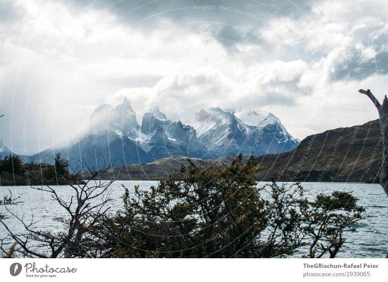 Cerro Paine Grande Umwelt Natur Landschaft blau grau schwarz weiß Wasser See lago péhoe Torres del Paine NP Berge u. Gebirge Aussicht Tourismus Wolken
