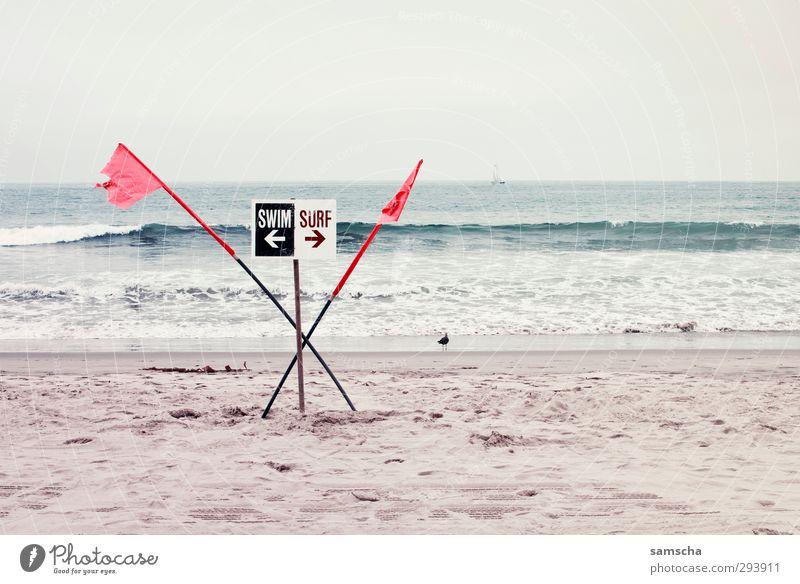 entweder –oder Himmel Natur Ferien & Urlaub & Reisen Wasser Sommer Meer Strand Umwelt Sport Küste Sand Schwimmen & Baden Wellen Freizeit & Hobby