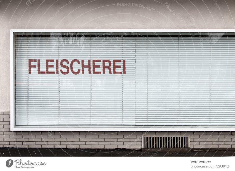 wegen vegetarismus geschlossen Stadt Haus Fenster Wand Mauer Arbeit & Erwerbstätigkeit Lebensmittel Fassade Schilder & Markierungen Schriftzeichen Ernährung