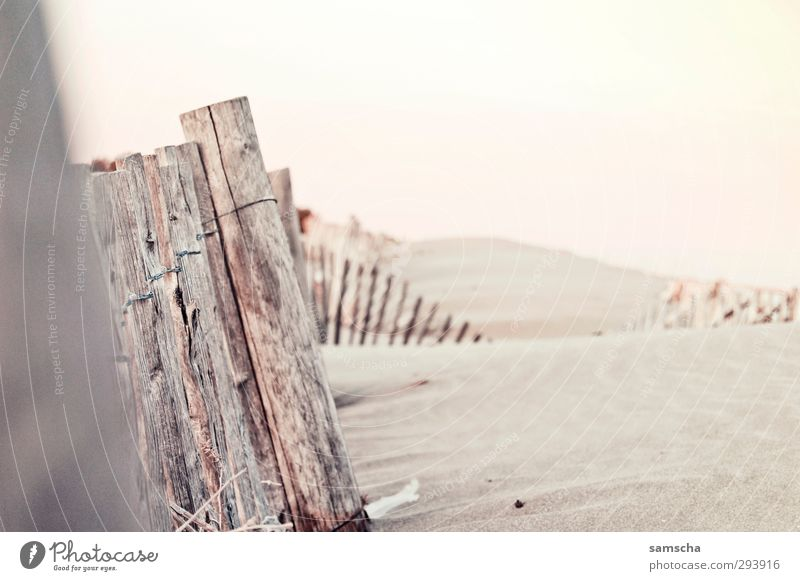 Sanddünen Ferien & Urlaub & Reisen Tourismus Ausflug Abenteuer Sommer Strand Umwelt Natur Landschaft Himmel Küste Meer Wüste frei Sandstrand Sandbank