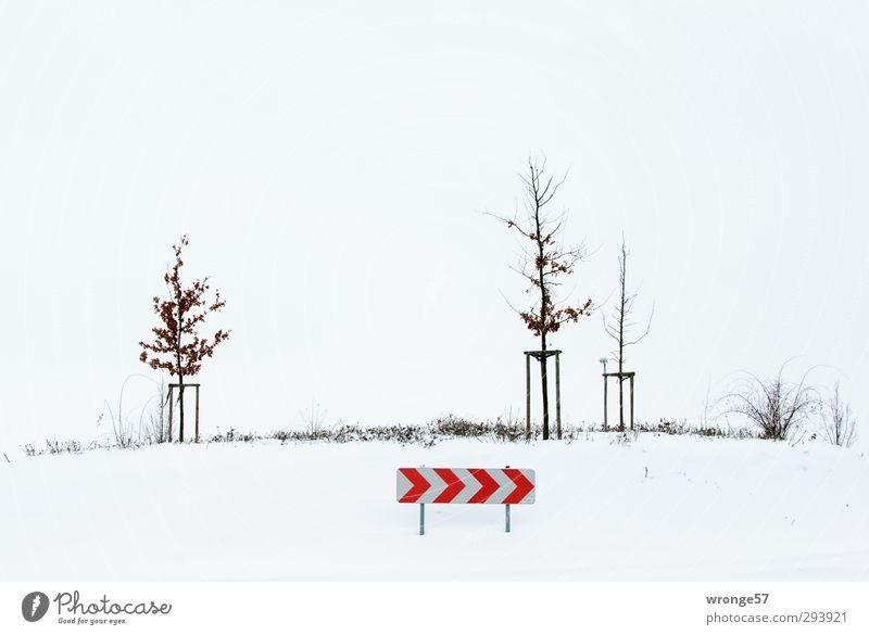 >>>> Nebel Baum Sträucher Verkehrswege Straßenverkehr Verkehrszeichen Verkehrsschild Kreisverkehr kalt braun rot weiß Kreisel Mittelinsel Winter Schnee