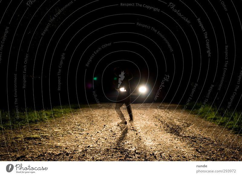 Unfall Spaziergang wandern Mensch 1 Natur Erde Sand Gras Wald Autofahren Fußgänger Verkehrsunfall Straße Wege & Pfade PKW leuchten Aggression bedrohlich dreckig