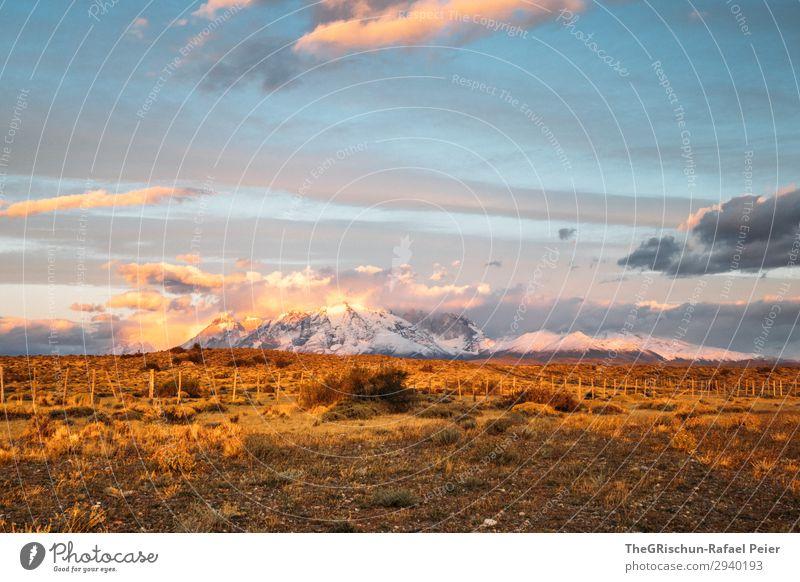 Patagonia Umwelt Natur Landschaft blau braun gelb gold violett rosa Stimmung Patagonien Außenaufnahme Morgendämmerung Sonnenaufgang Wolken Sonnenstrahlen