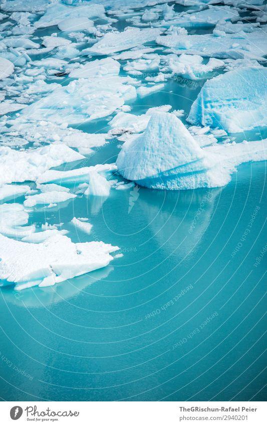 Perito Moreno Gletscher Umwelt Natur blau türkis weiß Wasser Eisberg Eisscholle Im Wasser treiben Schnee Maßeinheit Argentinien Farbfoto Menschenleer